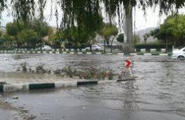 کانال های آب و رودخانه کرمانشاه لایروبی می شود