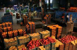 رکود به بازار میوه و ترهبار کرمانشاه کشیده شد / صعود اجارهبهای غرفهها نبض میوهفروشان بازار روز را به شماره انداخت