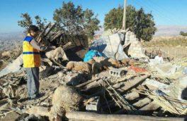 پیگیری مقرری بازماندگان و از کار افتادگان زلزله/ شناسایی ۱۸ هزار خانوار آسیب دیده
