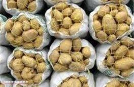 ۷ تن سیب زمینی سرقتیدر روستای داردرفش کشف شد/ دستگیری ۳ سارق