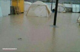 بارش باران در مناطق زلزله زده مشکلات زیادی برای زلزله زدگان به وجود آورده است