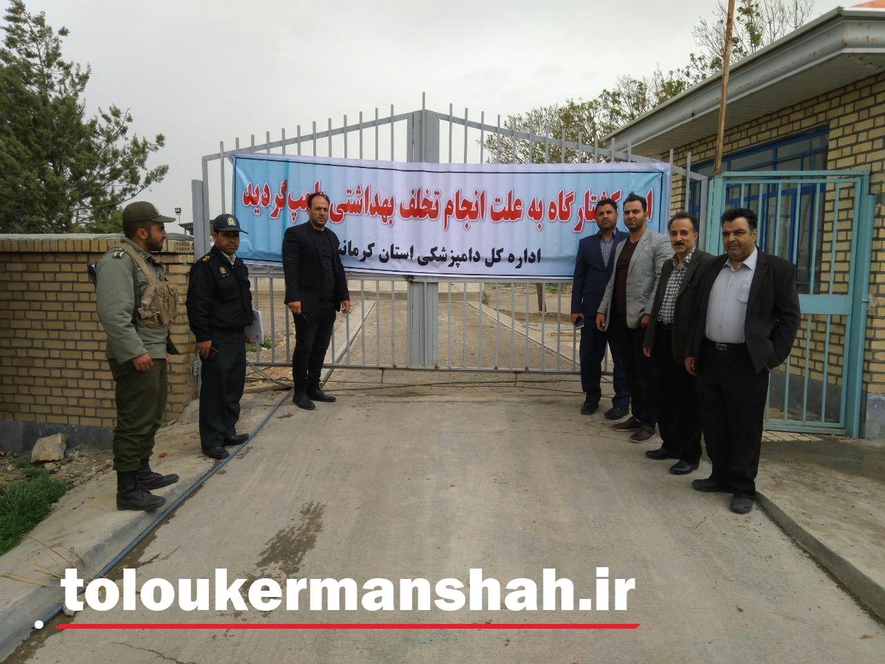 تعطیلی کشتارگاه صنعتی طیور به علت تخلف بهداشتی در کرمانشاه