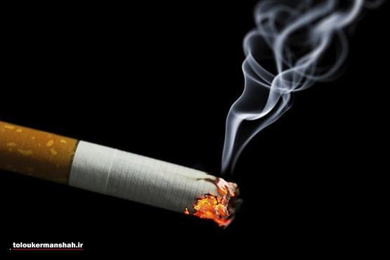 دود سیگار حاوی ۵ هزار ماده شیمیایی است / یک سوم از مرگهای ناشی از بیماری عروق کرونر قلب با سیگار و دود سیگار در ارتباط است