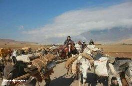 عشایر استان کرمانشاه به ییلاق کوچ کردند