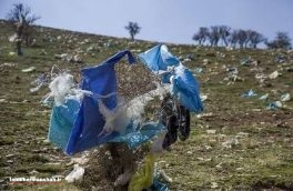 رهاسازی پسماندهای بیمارستانی در اماکن عمومی کرمانشاه و تهدید سلامت شهروندان / لزوم احداث سایت زبالههای ویژه