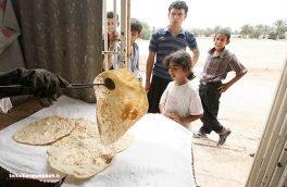 نانواییهای فاقد پروانه شناسایی و پلمب میشوند