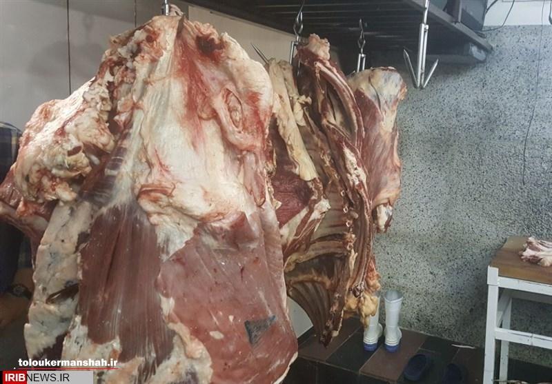 بیش از ۱۴ تن گوشت غیر بهداشتی در کرمانشاه کشف شد