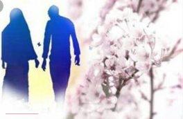 زن در چه صورت نصف دارایی شوهر سابق خود را دریافت می کند؟