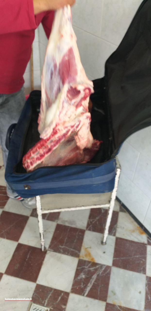 کشف لاشه گوسفند در داخل چمدان