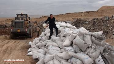 ۵۳تن باقلای خارجی در مرز پرویز خان معدوم شد