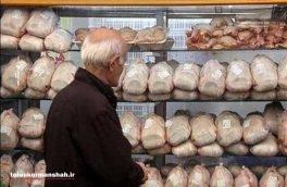 توزیع مرغ به قیمت هر کیلو ۸۹۰۰ تومان در کرمانشاه آغاز شد