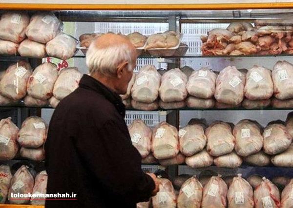 آغاز عرضه مرغ منجمد در ۱۰ فروشگاه