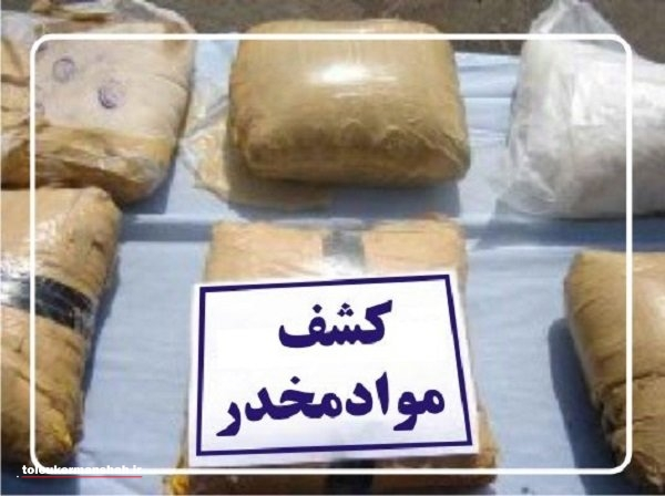 دستگیری اعضای باند تهیه و توزیع مواد مخدر در هرسین