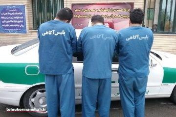 کشف ۹۶ فقره سرقت در کرمانشاه /۵۰ سارق و مالخر دستگیر شدند