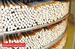 کشف ۵۰ هزار نخ سیگار قاچاق در پاوه