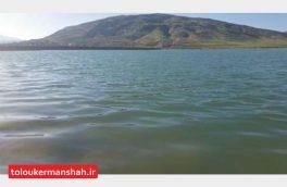 گیلانغرب مرکز راه اندازی ورزشهای آبی و آموزش قایقرانی میشود