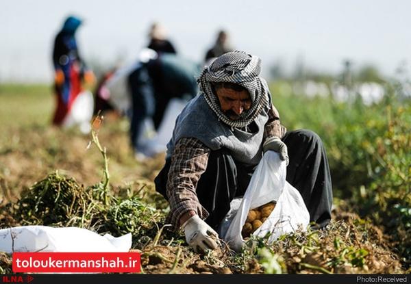 مستمریبگیران صندوق بیمه اجتماعی کشاورزان و روستاییان کرمانشاه عیدی گرفتند