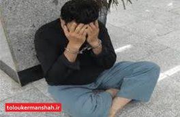 عامل اسید پاشی در دام پلیس گرفتار شد