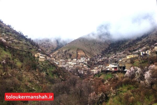 ناشناختههای طبیعی کرمانشاه را اینجا جستجو کنید/ساتیاری بهشت گمشده در زاگرس