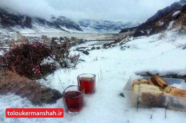 طبیعت زیبای کوه ظفر کرمانشاه در برف امروز (تصاویر)
