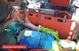 نجات جان کوهنورد از ارتفاعات کوه فرخشاد
