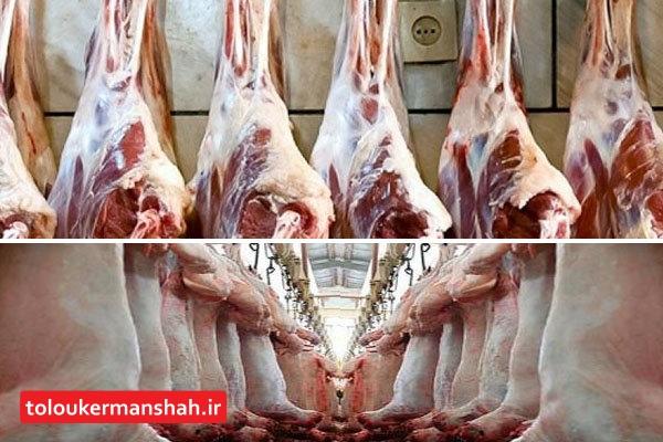 افزایش قیمت گوشت هیچ ارتباطی با صادرات آن ندارد!