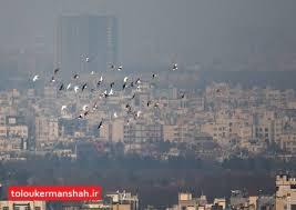 غبار صبحگاهی که سطح شهر کرمانشاه را فرامیگیرد چیست؟