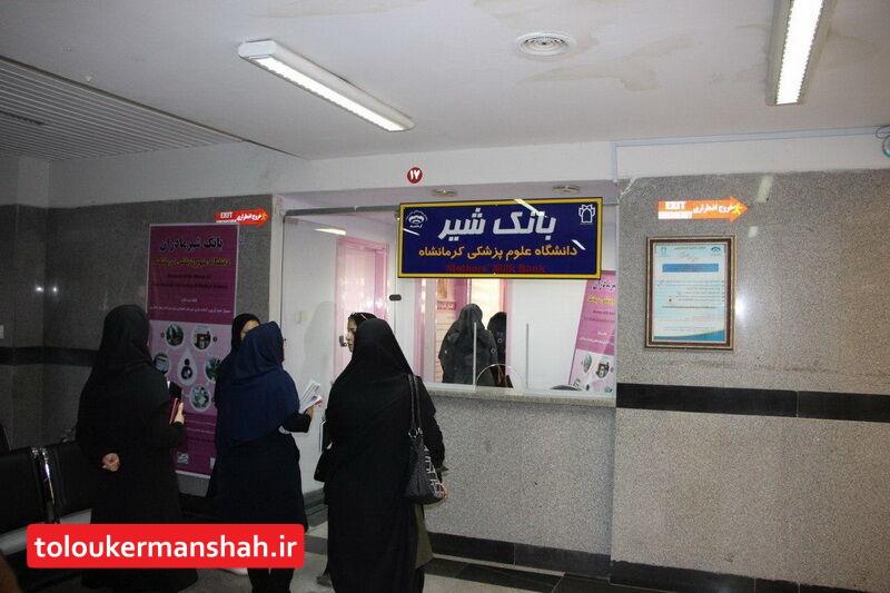 کرمانشاه صاحب بانک شیر می شود