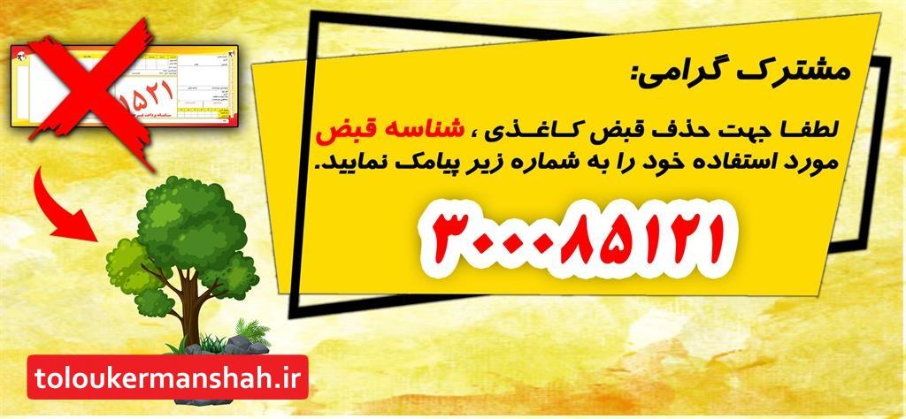ثبت ۹۵ درصد اطلاعات مشترکان برق کرمانشاه در طرح قبوض الکترونیکی