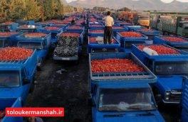 """برخی کارخانجاتِ برند، """"ربگوجه"""" دلالی میکنند/قیمت رب گوجه باید کاهش یابد"""
