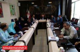 نشست دادستان عمومی و انقلاب مرکز استان کرمانشاه با تعدادی از اعضای سازمان های مردمنهاد استان کرمانشاه