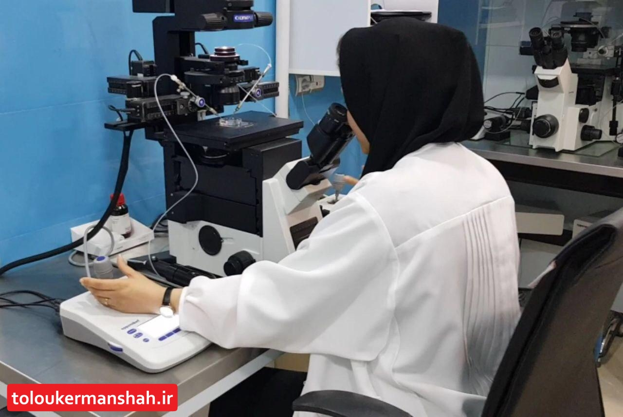 زوجیننابارور در کرمانشاه از ۸۵ درصد تخفیف خدمات درمانی بهره مند می شوند