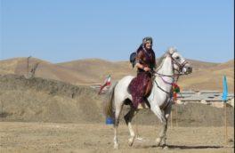 همایش بینالمللی اسب کُرد در کرمانشاه برگزار میشود