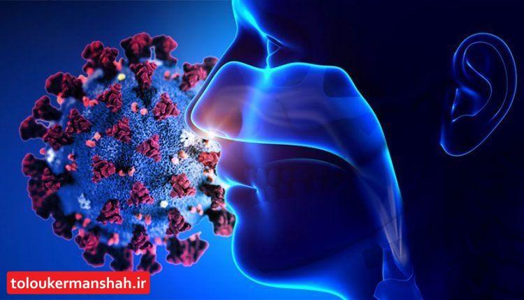 همه چیز درباره از بین رفتن حس بویایی و چشایی در بیماری کرونا