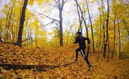 در پاییز کرونایی چگونه ورزش کنیم؟