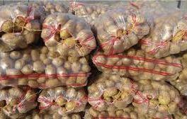 سرنوشت گوجهفرنگی اینبار در انتظار سیبزمینی/کامیون سیبزمینی به مرز نفرستید !