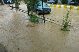 غرب کرمانشاه در آمادهباش بارشهای شدید/ فعلا مشکل حادی نداشتیم