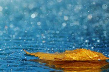 بارندگیهای اخیر در کرمانشاه چشمگیر نبود/ ورود مجدد سامانه بارشزا به استان