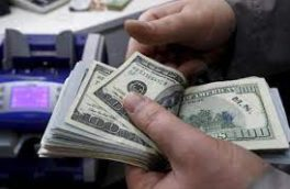 چند نرخی بودن ارز، عامل رانت و فساد/ دلار ۴۲۰۰ تومانی به دست مردم نمیرسد