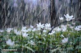امروز و فردا هوای استان کرمانشاه بارانی است