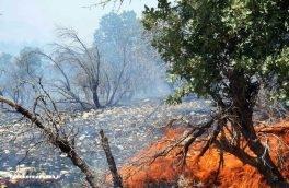 مهار آتش در ارتفاعات گیلانغرب