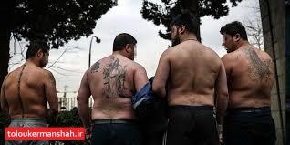 شکار عقاب های پایروند توسط پلیس کرمانشاه/ دستگیری هر ۴ عضو باند