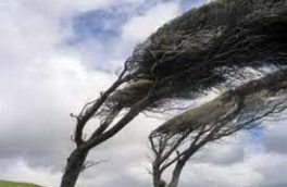 وزش باد نسبتاً شدید و گردوخاک محلی در کرمانشاه