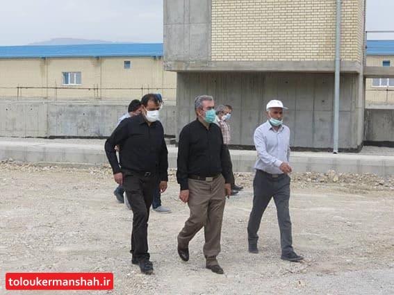 بازدید شهلایی مدیر عامل شرکت آب منطقه ای از محل طرح آبرسانی کرمانشاه
