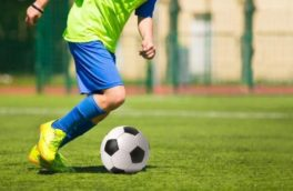 از سَرگیری فعالیت رشتههای ورزشی کمبرخورد در کرمانشاه