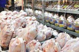 بازار مرغ در کرمانشاه از اواخر مرداد آرام میشود